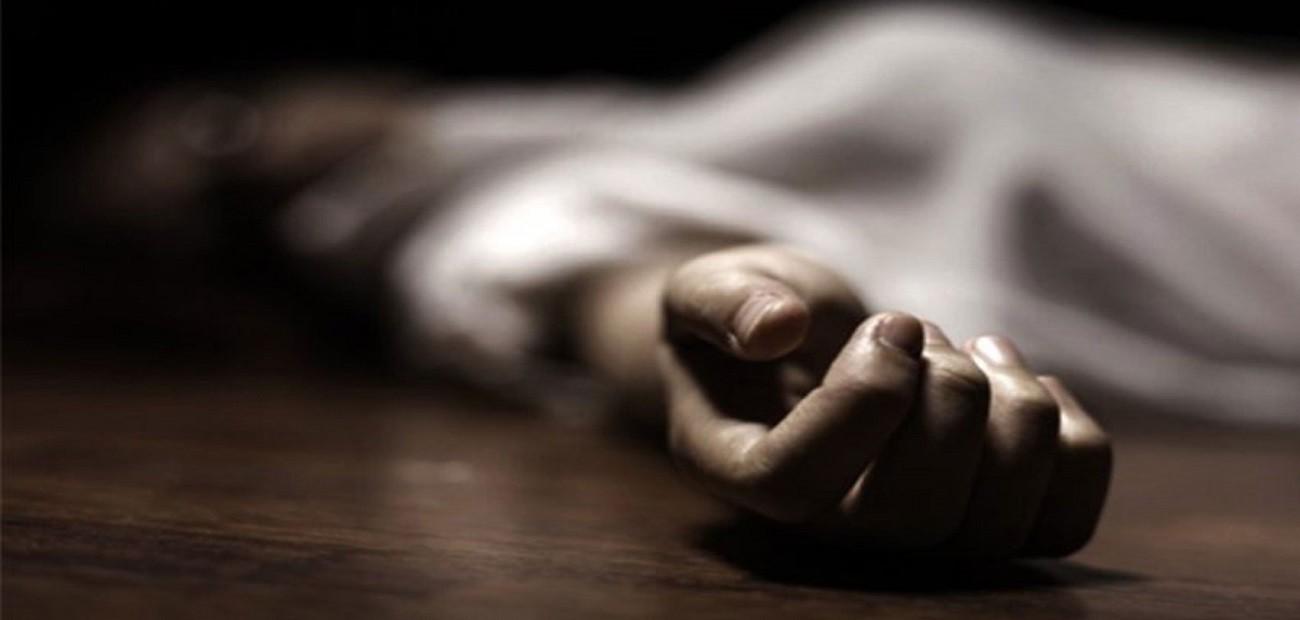 रुख काट्दा करेन्ट लागेर चितवनमा दुई सैनिकको मृत्यु